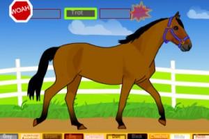 Jeu cheval a dresser